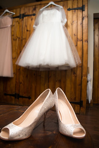 Ellison Wedding 2017-130