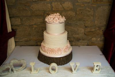 Ellison Wedding 2017-108