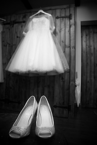 Ellison Wedding 2017-128