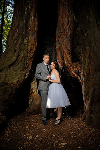 9598-d700_Katrina_and_Barry_Henry_Cowell_Redwoods_Felton_Wedding_Photography