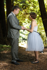 0011-d3_Katrina_and_Barry_Henry_Cowell_Redwoods_Felton_Wedding_Photography