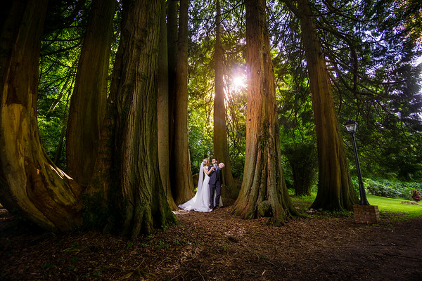 Emma & Laurence  Ballyseedy Castle