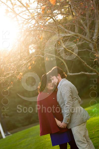 2013-12-15-horse-head-engagement-ilya-antonia-9509