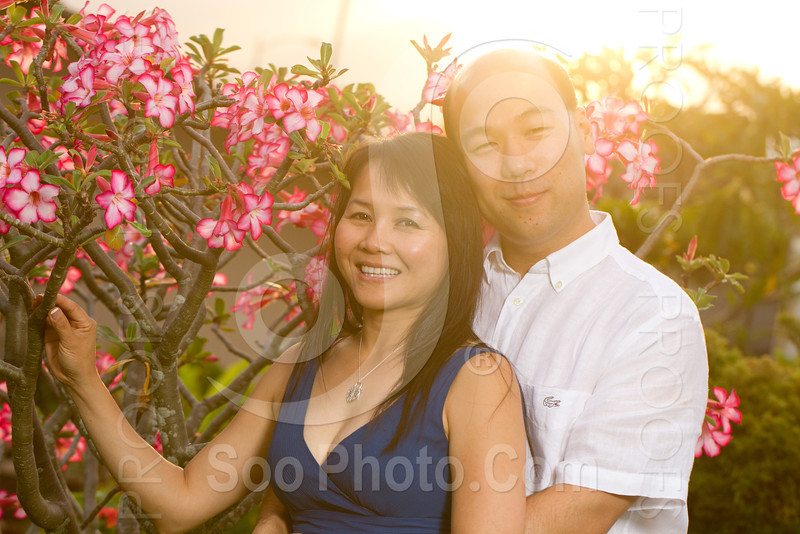 engagement-session-honolulu-hawaii-8041