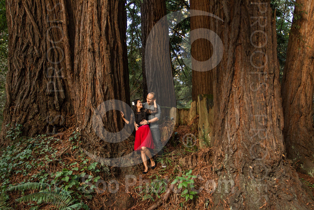 2014-02-17-liz-khoa-engagement-santa-cruz-2522