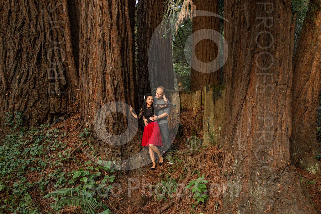 2014-02-17-liz-khoa-engagement-santa-cruz-2518