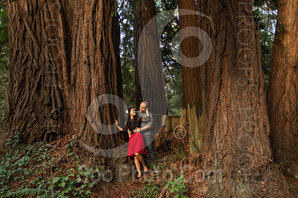 2014-02-17-liz-khoa-engagement-santa-cruz-2525