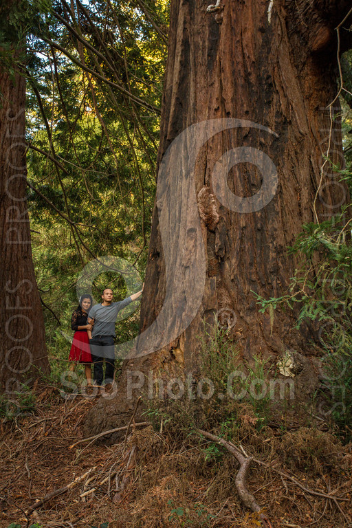 2014-02-17-liz-khoa-engagement-santa-cruz-2493
