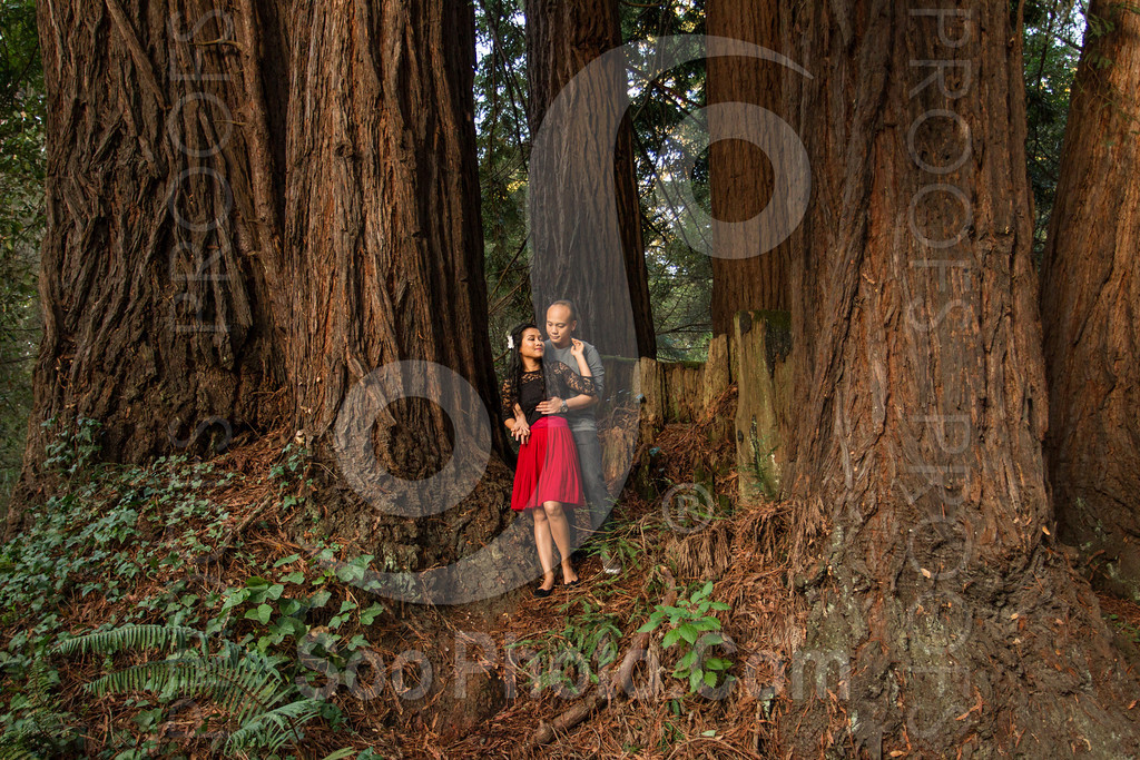 2014-02-17-liz-khoa-engagement-santa-cruz-2530