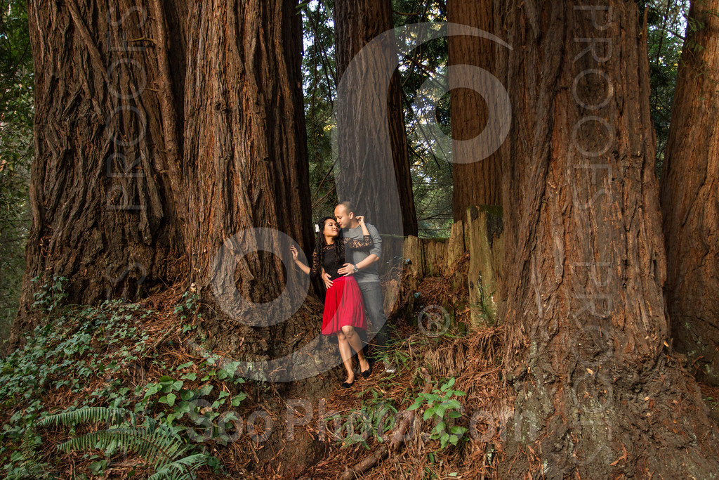 2014-02-17-liz-khoa-engagement-santa-cruz-2527