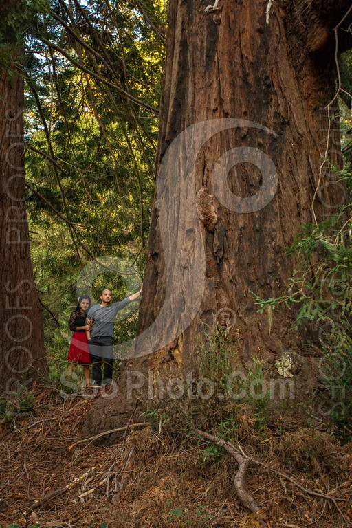 2014-02-17-liz-khoa-engagement-santa-cruz-2494