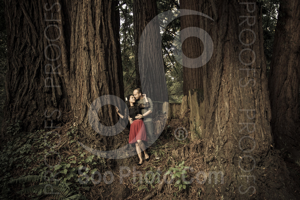 2014-02-17-liz-khoa-engagement-santa-cruz-2526-2