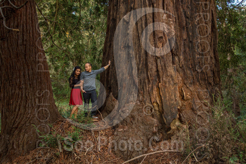 2014-02-17-liz-khoa-engagement-santa-cruz-2506