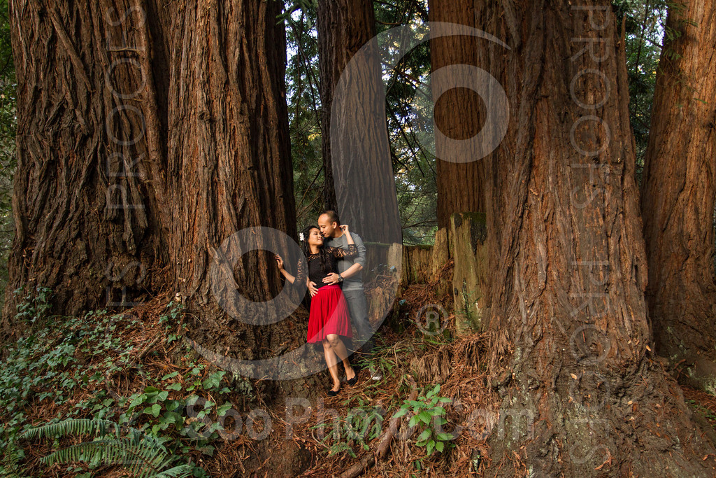 2014-02-17-liz-khoa-engagement-santa-cruz-2526