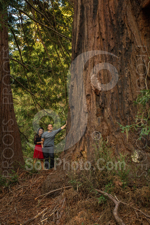 2014-02-17-liz-khoa-engagement-santa-cruz-2492