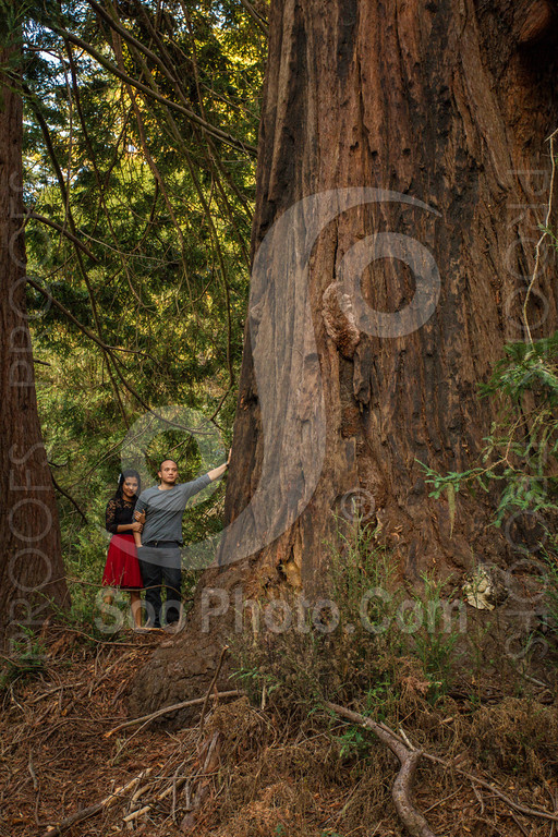 2014-02-17-liz-khoa-engagement-santa-cruz-2495