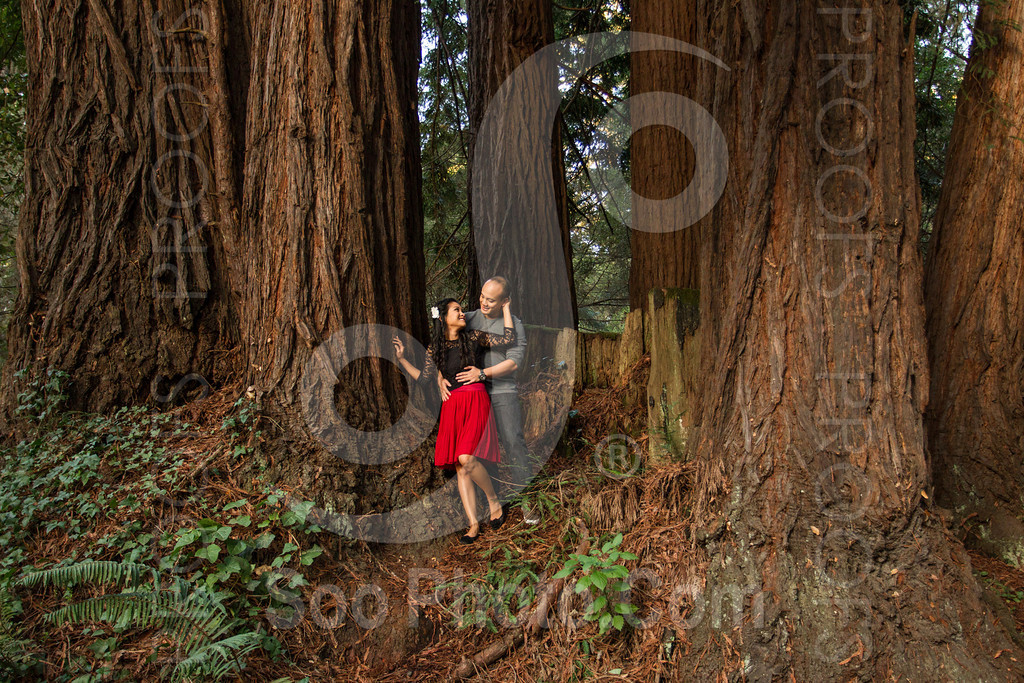 2014-02-17-liz-khoa-engagement-santa-cruz-2521