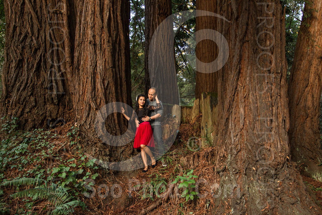2014-02-17-liz-khoa-engagement-santa-cruz-2519