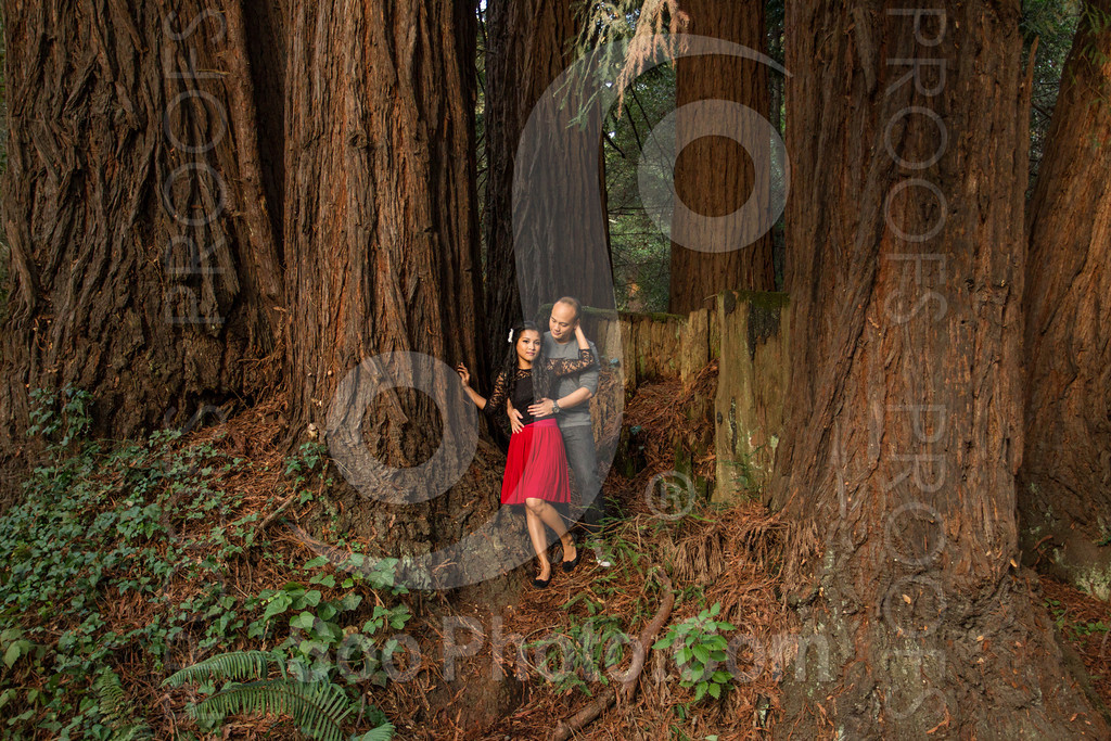 2014-02-17-liz-khoa-engagement-santa-cruz-2517