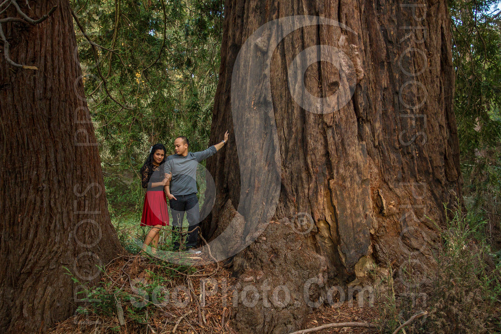 2014-02-17-liz-khoa-engagement-santa-cruz-2504