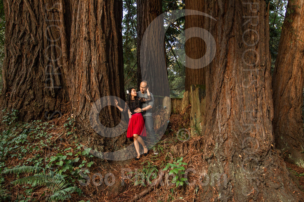 2014-02-17-liz-khoa-engagement-santa-cruz-2520