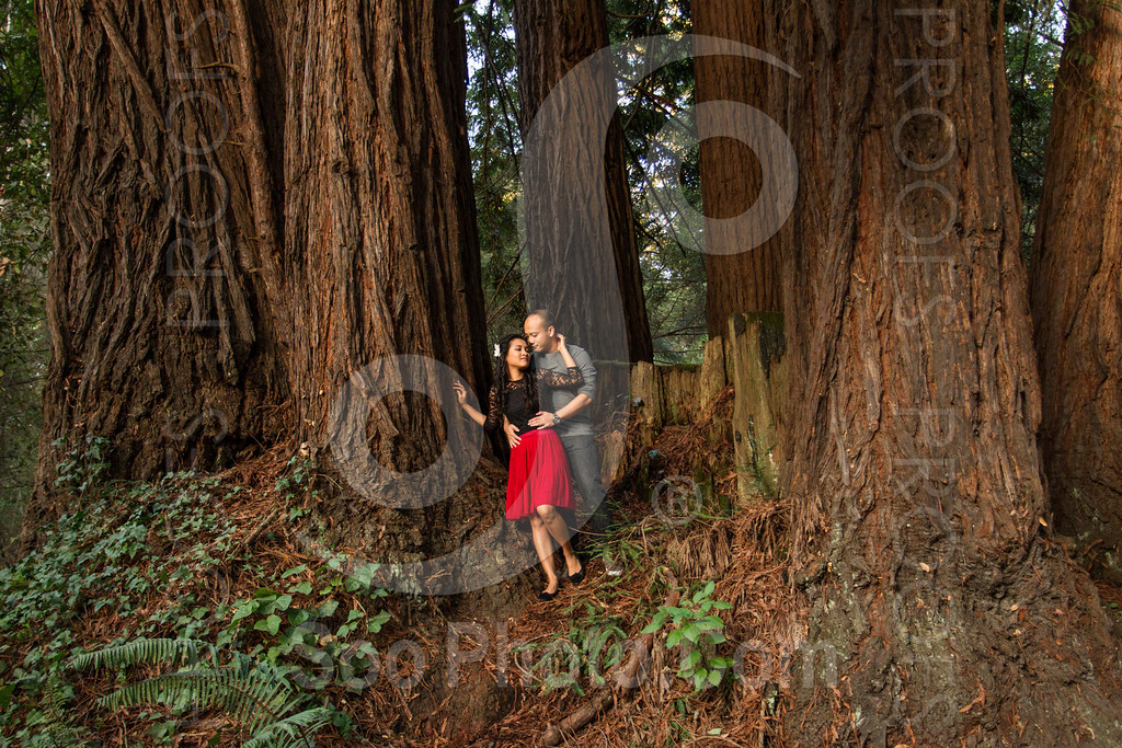 2014-02-17-liz-khoa-engagement-santa-cruz-2529
