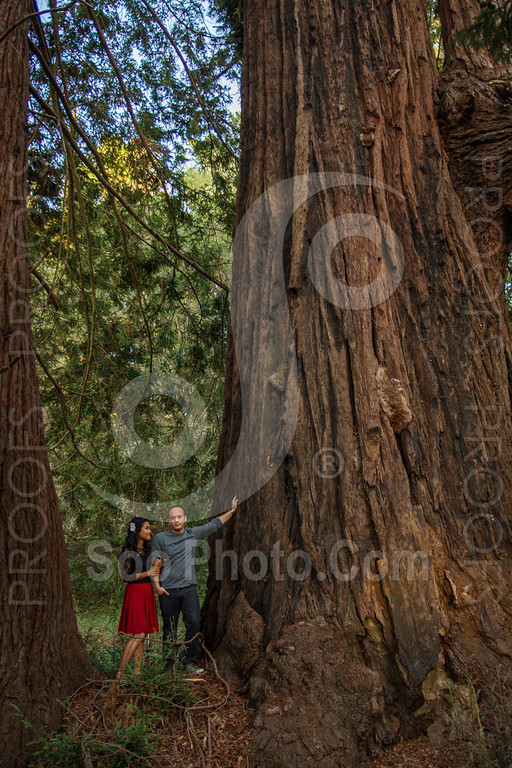 2014-02-17-liz-khoa-engagement-santa-cruz-2509