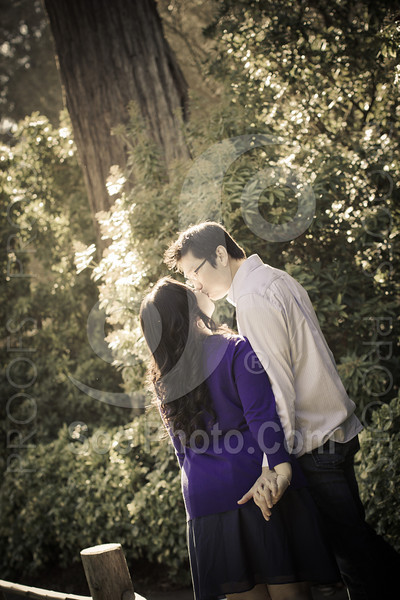 wendy-johnny-engagement-sf-3882