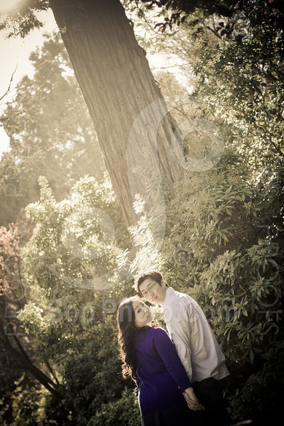 wendy-johnny-engagement-sf-3892