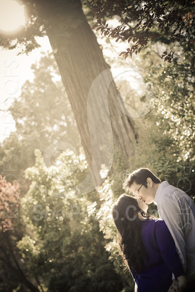 wendy-johnny-engagement-sf-3884