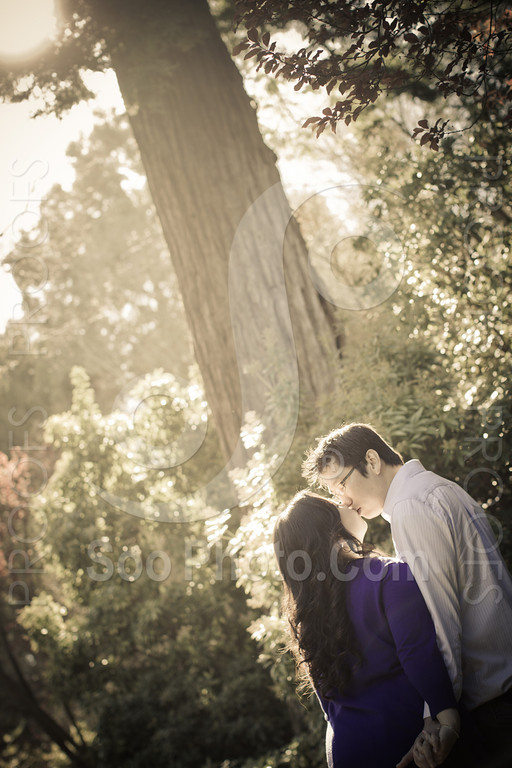 wendy-johnny-engagement-sf-3885