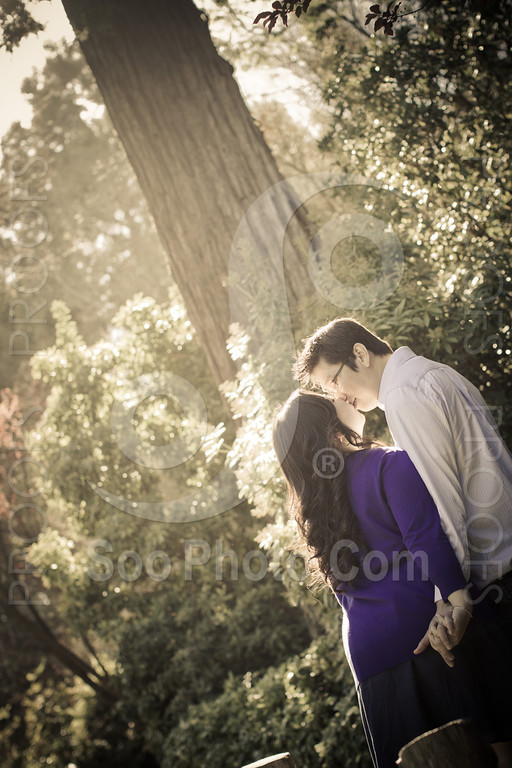 wendy-johnny-engagement-sf-3887