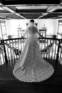 Clesson Bridal-78