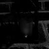scarterstudios E&M879