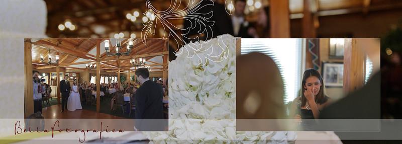 Erin-Mike-Wedding-Album-2012-19