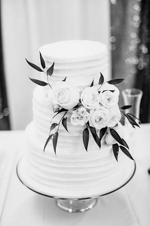 06086-©ADHPhotography2019--EvanBrandiMcConnell--Wedding--April27