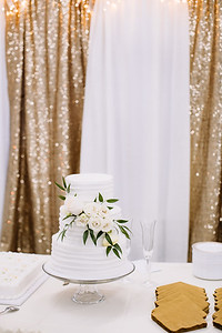 06095-©ADHPhotography2019--EvanBrandiMcConnell--Wedding--April27