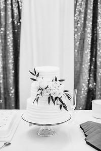 06094-©ADHPhotography2019--EvanBrandiMcConnell--Wedding--April27