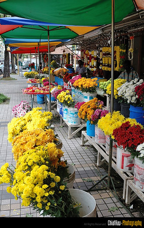 "Even the flowers are blooming nicely on that day. (Of course, if not no body will wanna buy it right) :""P"