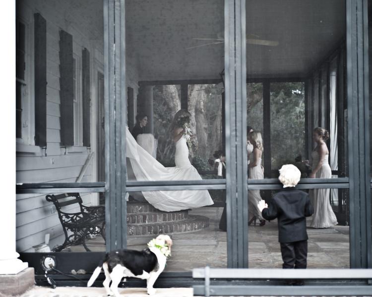 Foxic Wedding_20111119-L1002975