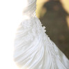 Catherine-Lacey-Photography-Wedding-UK-McGoey-1502