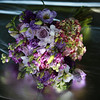 Catherine-Lacey-Photography-Wedding-UK-McGoey-1404