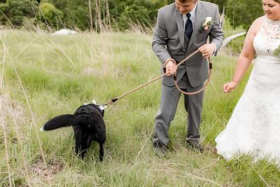 01911-©ADHPhotography2019--KALLIEGRADYLAMPHIER--WEDDING--JUNE21