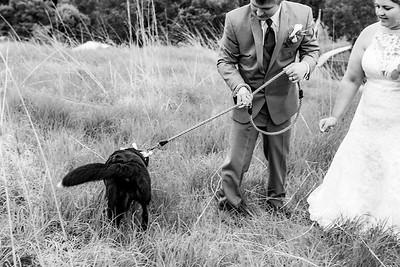 01912-©ADHPhotography2019--KALLIEGRADYLAMPHIER--WEDDING--JUNE21
