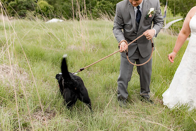 01909-©ADHPhotography2019--KALLIEGRADYLAMPHIER--WEDDING--JUNE21
