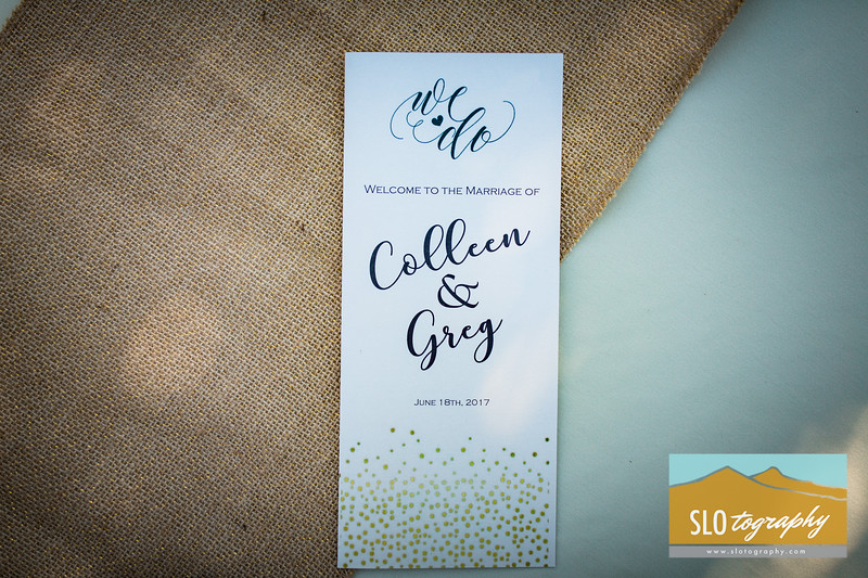 Greg+Colleen ~ Married_264