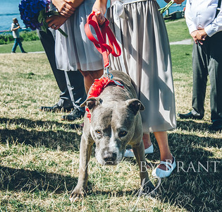 Gasworks_Park_Yelm_Wedding_Photographers_208_DSC_4850