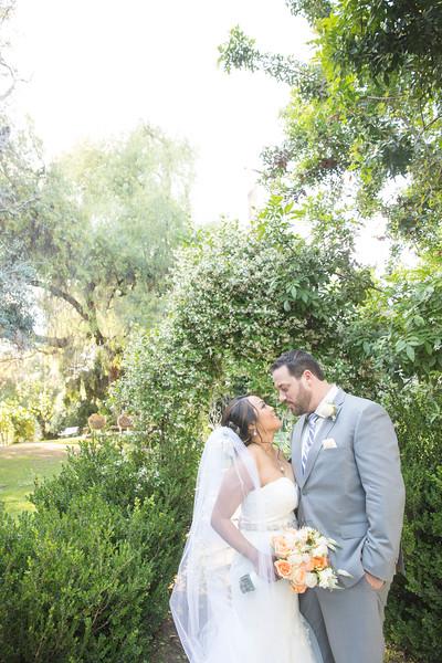 Hayflich Wedding
