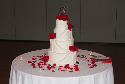 The wedding cake - Solon, OH ... July 4, 2009