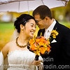 Weddings : 20 galleries with 6596 photos
